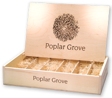 Wooden 6 Btl Box